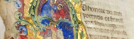 Visita guidata alla biblioteca Capitolare di Verona