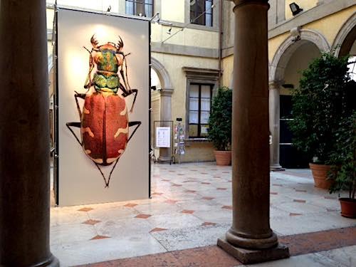 Museo di Storia Naturale di Verona